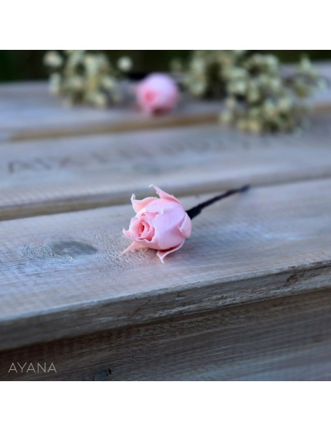 Pic-rose-fleurs-stabilisees