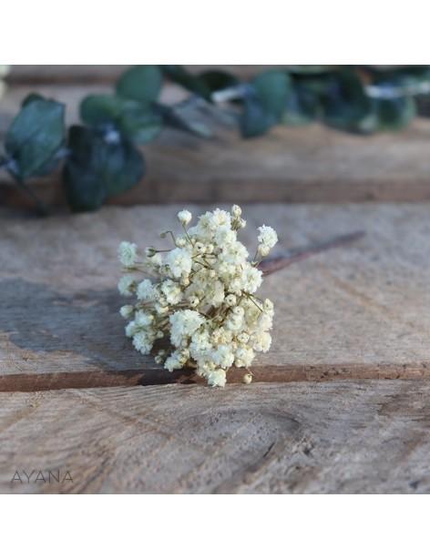 Pic-gypsophile-en-fleurs-eternelles