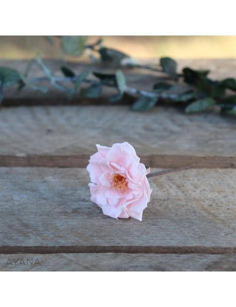 Pic-rose-sauvage-fleur