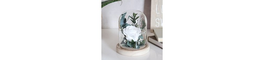 Flowered bells - Preserved and dried flowers - AYANA Floral Design